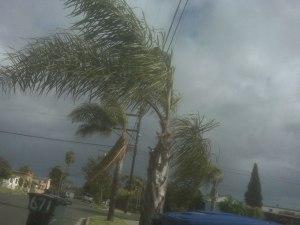 tropical-storm-29211280026392kvmj