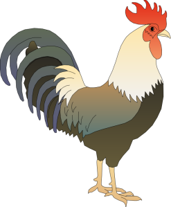 free-to-use-amp-public-domain-rooster-clip-art-rooster-clipart-661_800